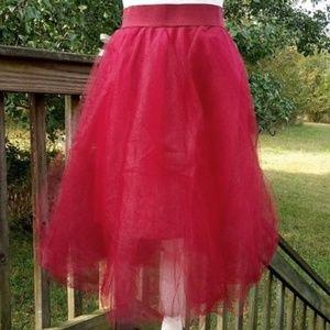 Rue 21 Tulle Skirt
